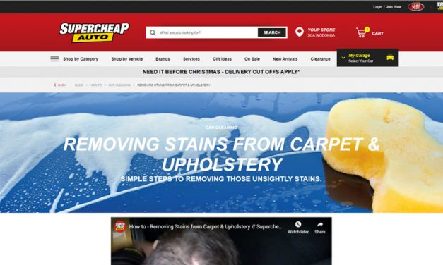 Removing Carpet and Upholstery Stains