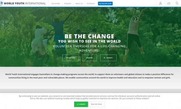 World Youth Volunteer